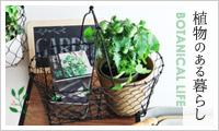 植物と暮らす特集